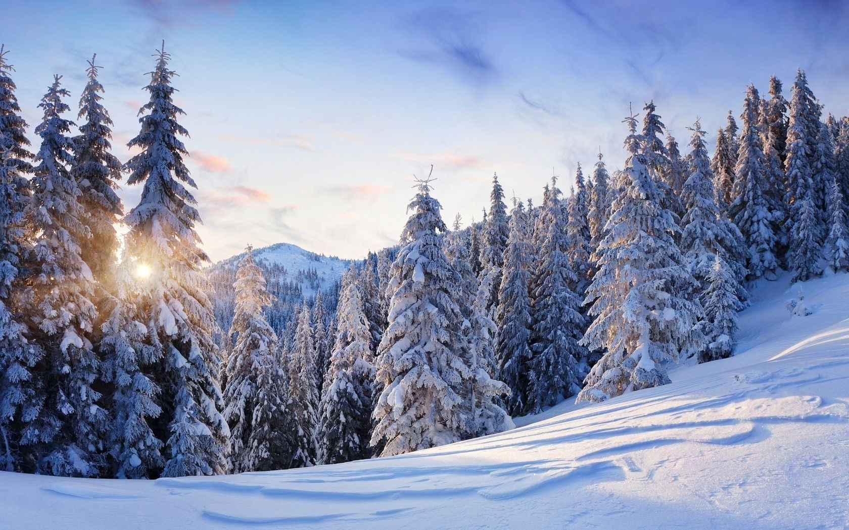 Mountains Nature Winter Trees Snow Phone Wallpapers
