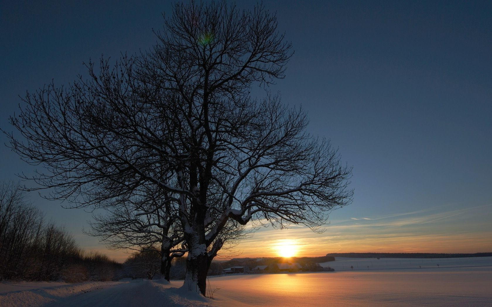 the sunset and sunrise dawn sunset landscape tree sun winter nature evening fog snow dusk fair weather silhouette outdoors light sky water backlit fall