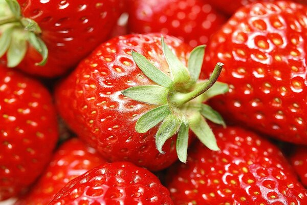 strawberry red berries strawberries