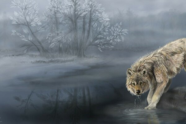 Wolf Drinking Water Painting