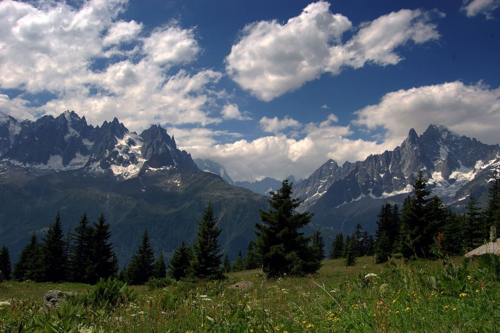 Alps summer mountain peaks meadow grass flowers forest sky about