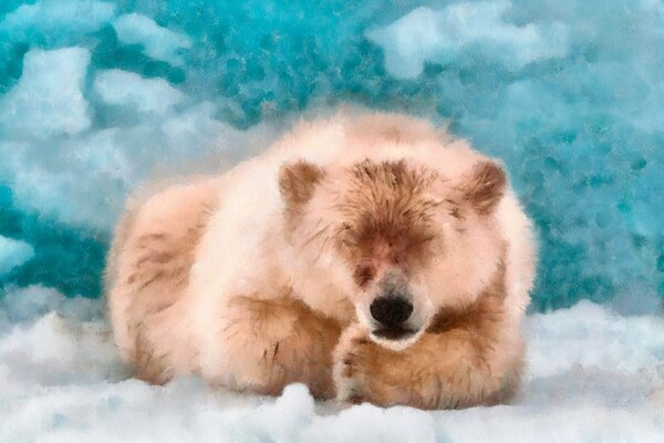 Polar Bear Sleeping DAP Watercolor