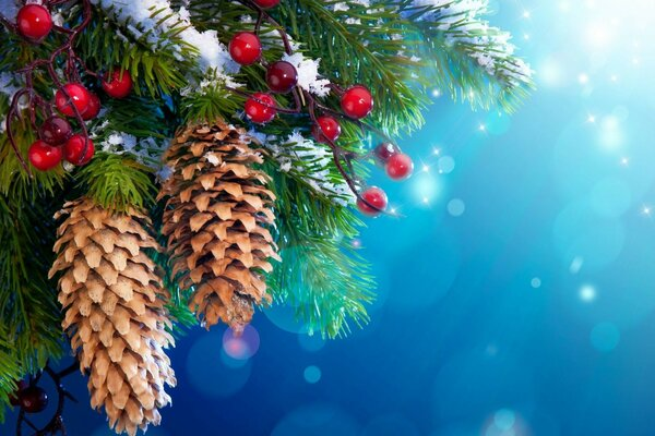 Christmas tree pine cones berries snow winter art new year 2013