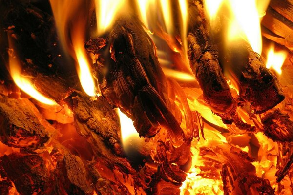 Fire coal fire flame heat