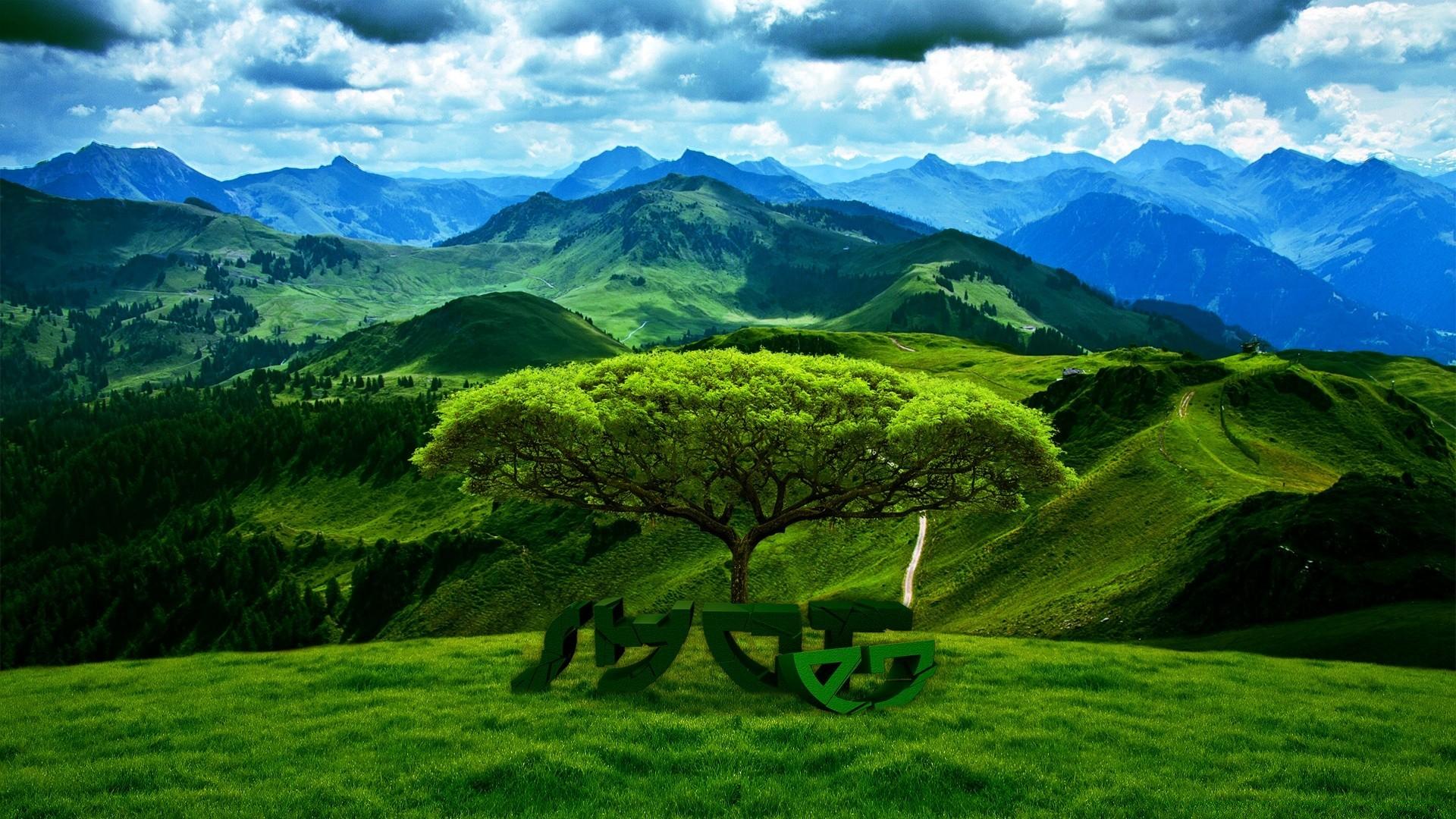 зеленая растительность, вода, горы скачать
