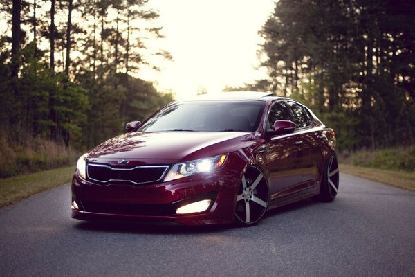 wood forest clean Kia optima Kia Optima road stance Dor