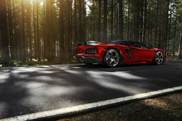Lamborghini Aventador from Mansory is driving along a road in the forest