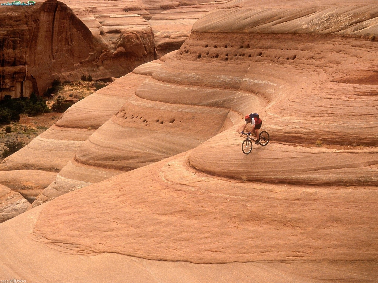 cycling desert travel outdoors sand one adventure recreation adult landscape arid