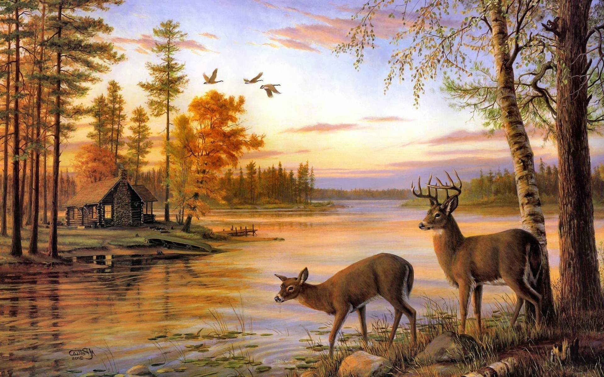 Two deer at the river phone wallpapers - Hunting wallpaper for android ...