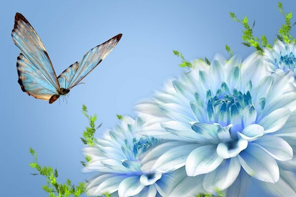 blue flower and butterfly.