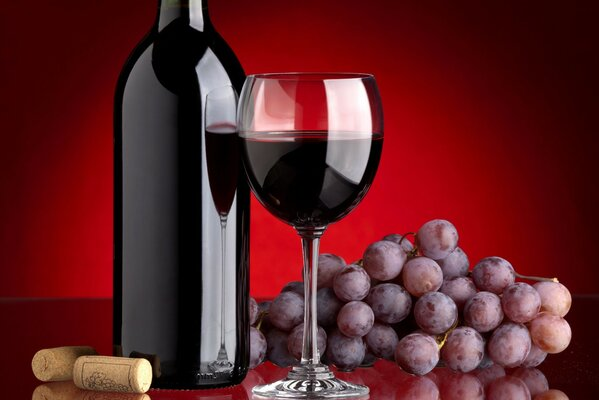 Red wine, glass and bunch of grapes