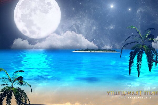 Tropical island moon and palm trees