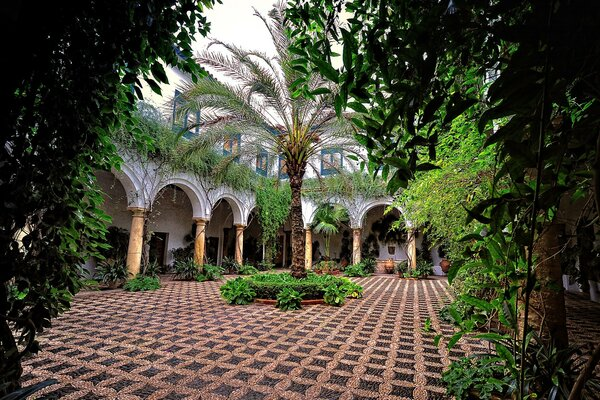 Andalusia, Spain. Courtyard with palm trees