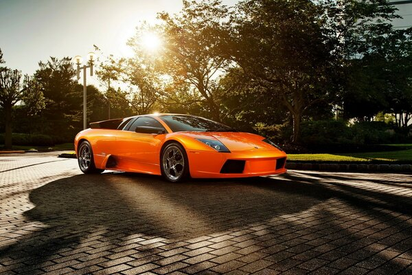 Orange sports car on the pavement