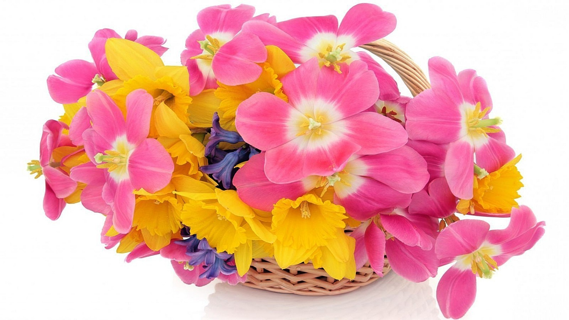 a basket of flowers iphone wallpapers for free