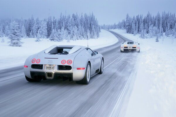 Two white Audi on a snowy track