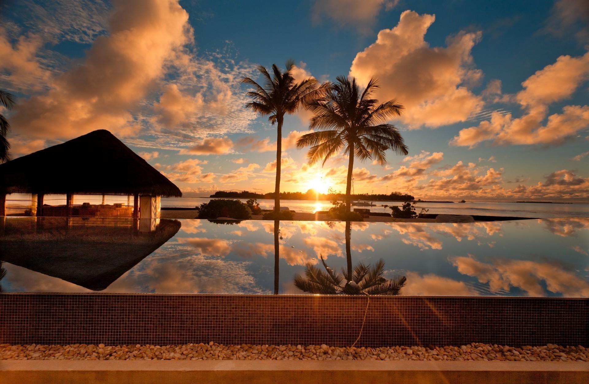 природа бассейн рассвет солнце пальмы отдых  № 2455831 без смс