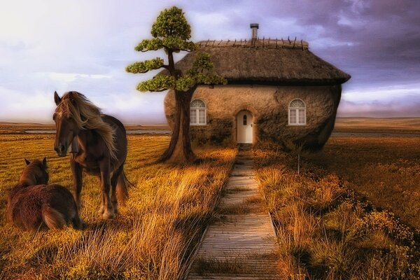 Drawn picture. Horses have a small house