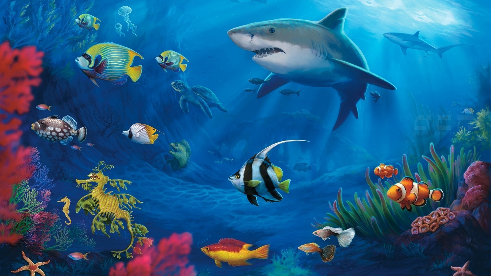 underwater world android wallpapers for free