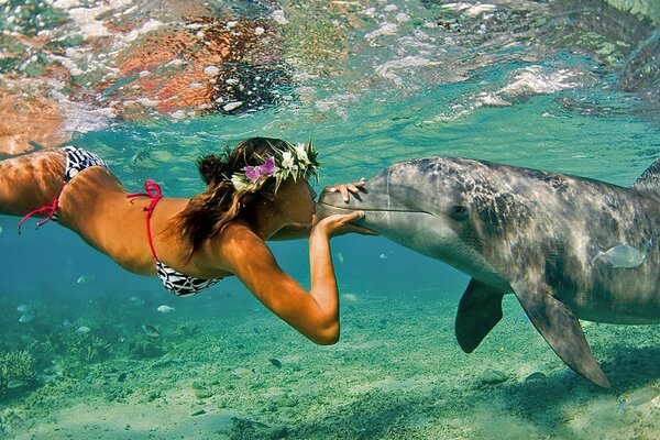 Girl with Dolphin