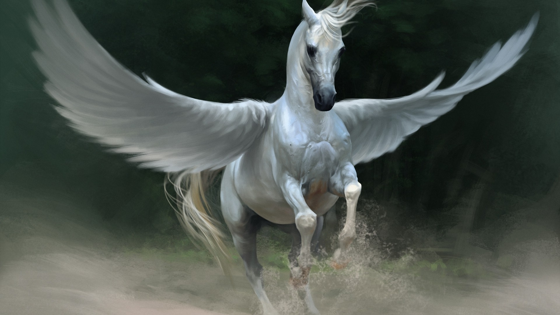 Pegasus - Android wallpapers
