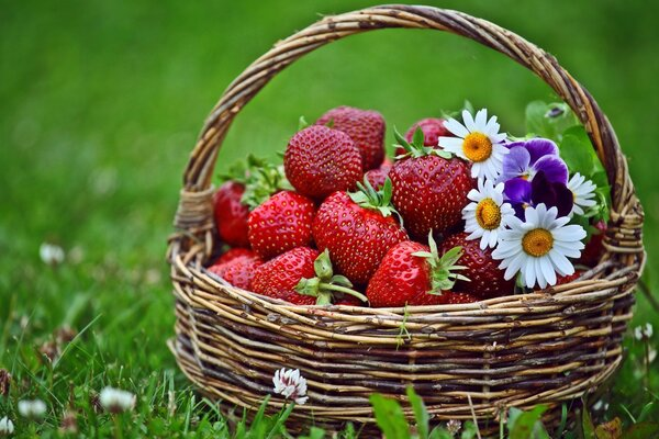A basket of strawberries flowers