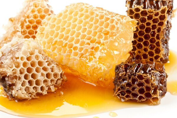 Honeycombs,honey