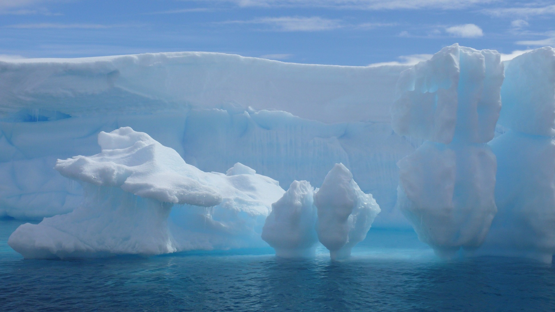 ice iceberg melting frosty swimming glacier snow water cold climate change winter greenland global warming nature outdoors frozen antarctic sea travel