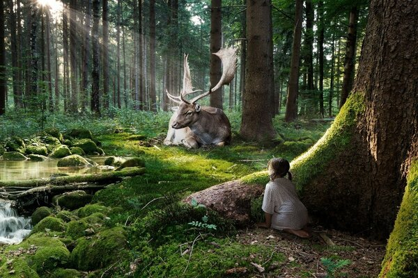 Girl watching huge fabulous deer