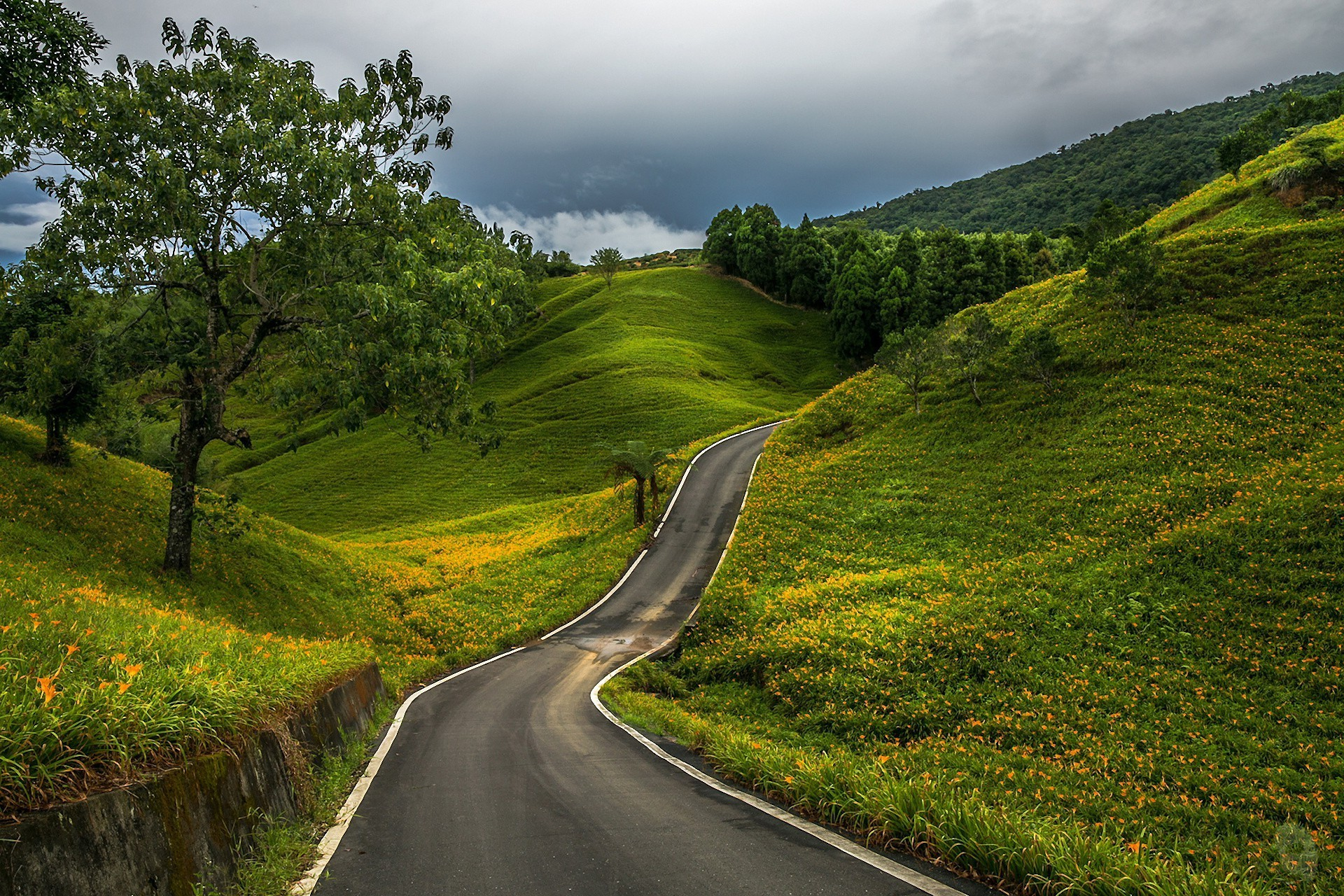 The serpentine road winds among green hills