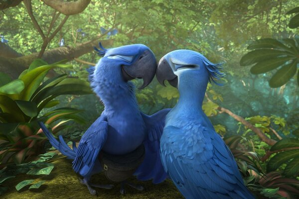 Rio 2 Blu and Jewel