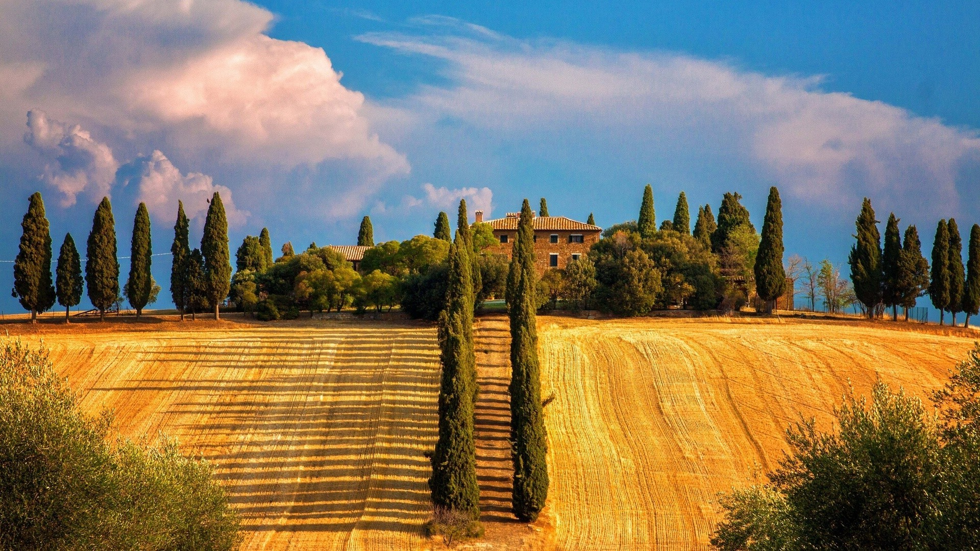 The Province Of Siena, Toscana, Italy. Android wallpapers ...