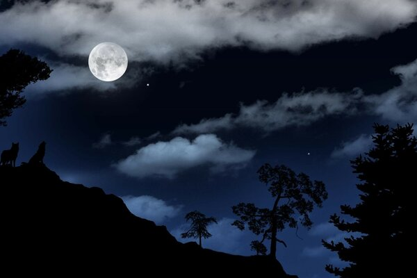 Night, moon,rock, wolves