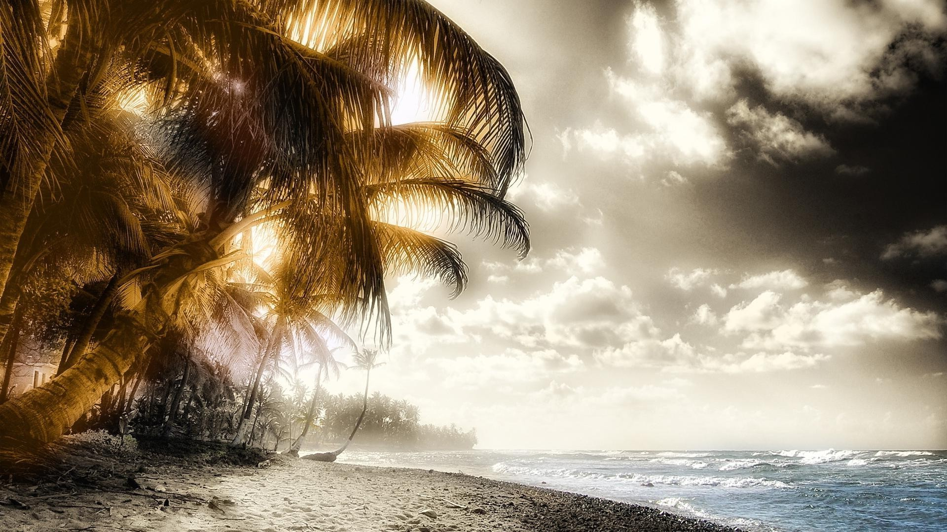 Ocean, island,palm trees, sun closed by clouds