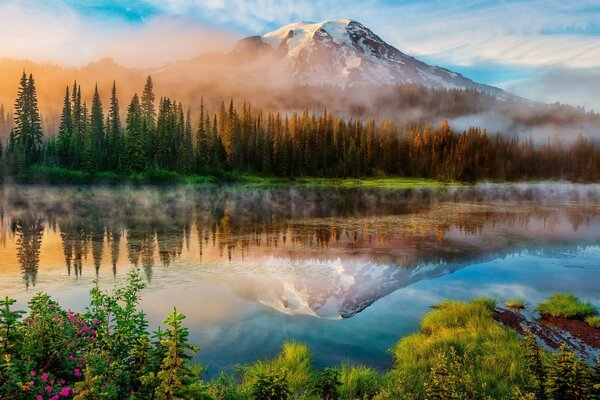 Colors, mirror-like surface of the lake, trees, fog, mountain