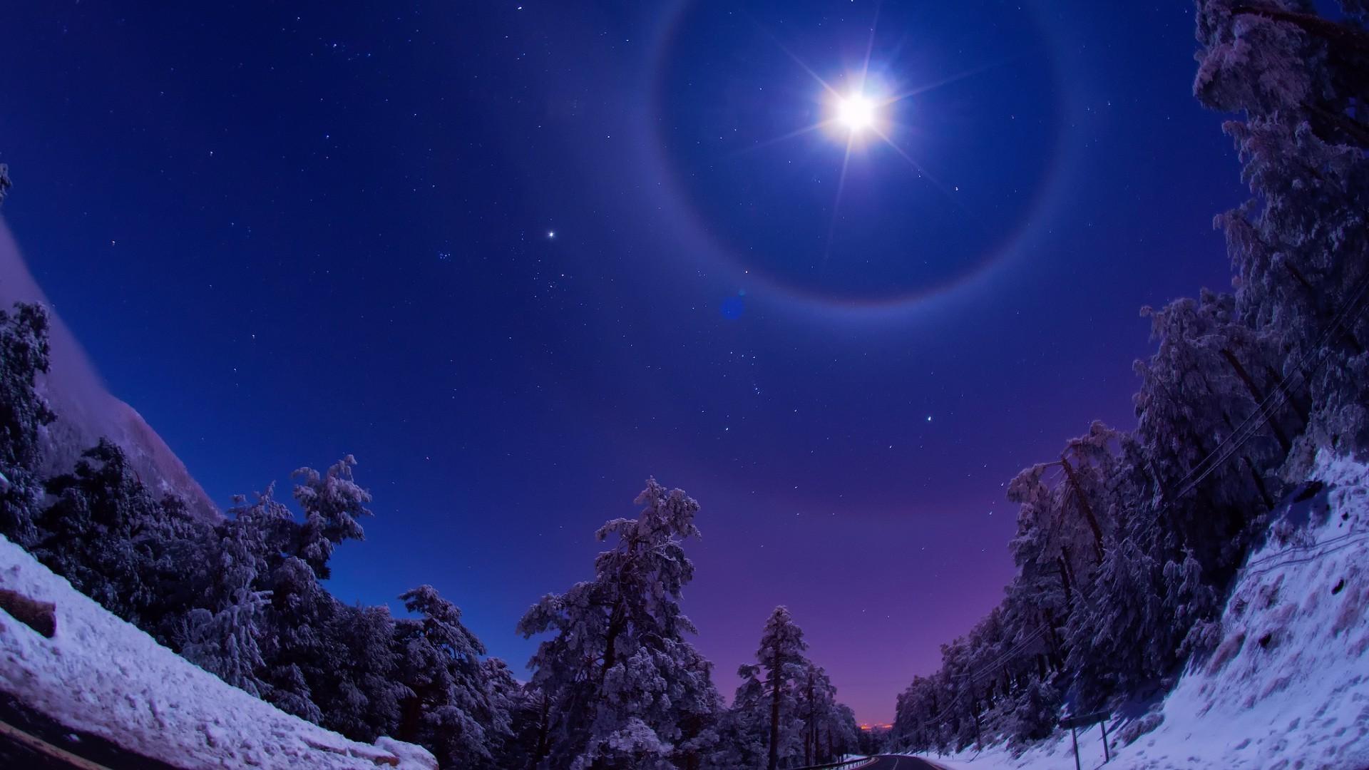 природа небо звезда снег зима деревья загрузить