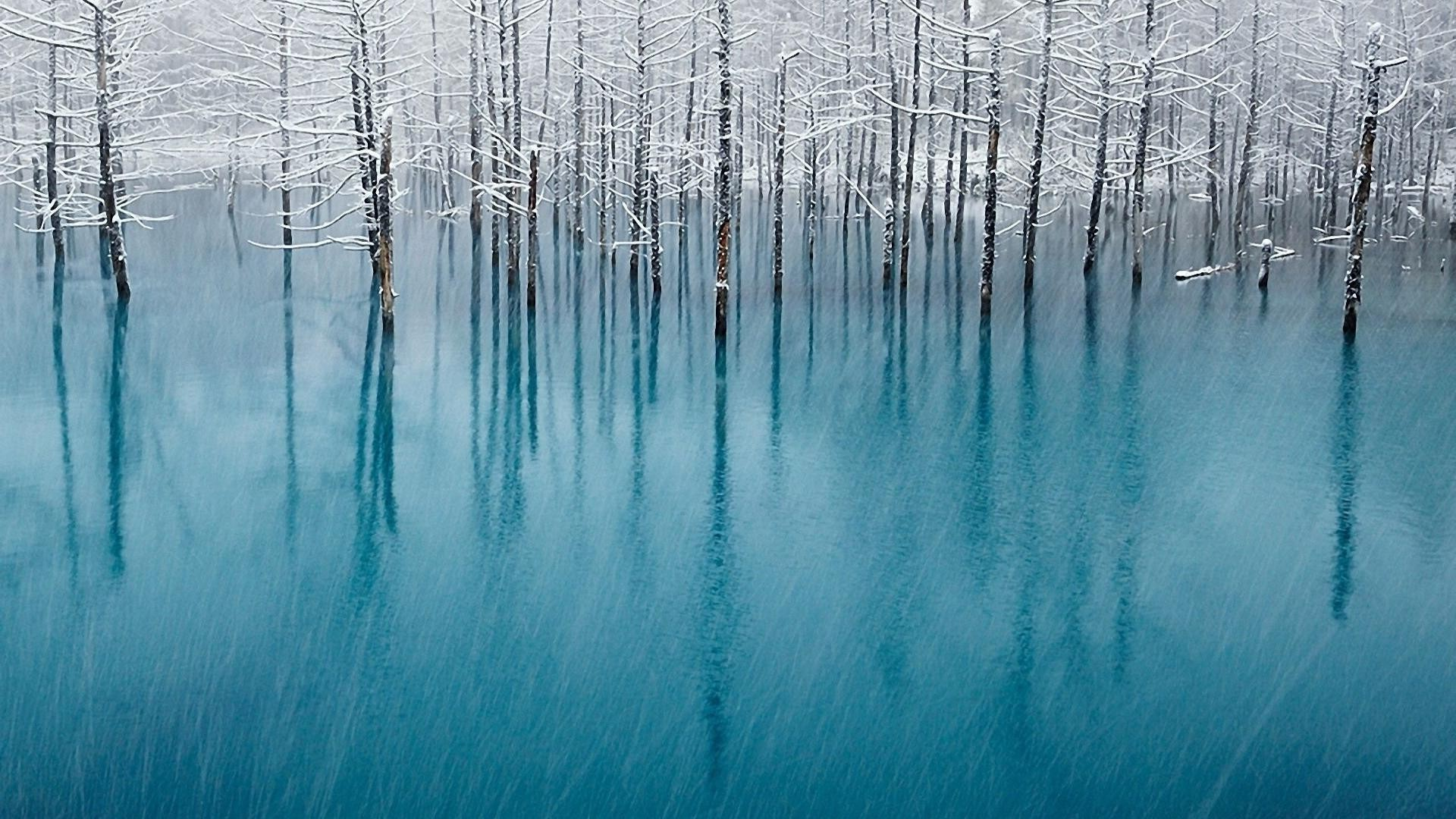 Snowfall, trees, water