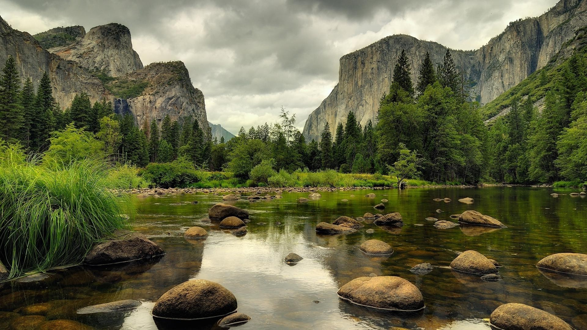 Stones, river, spruce, grass, rocks, clouds