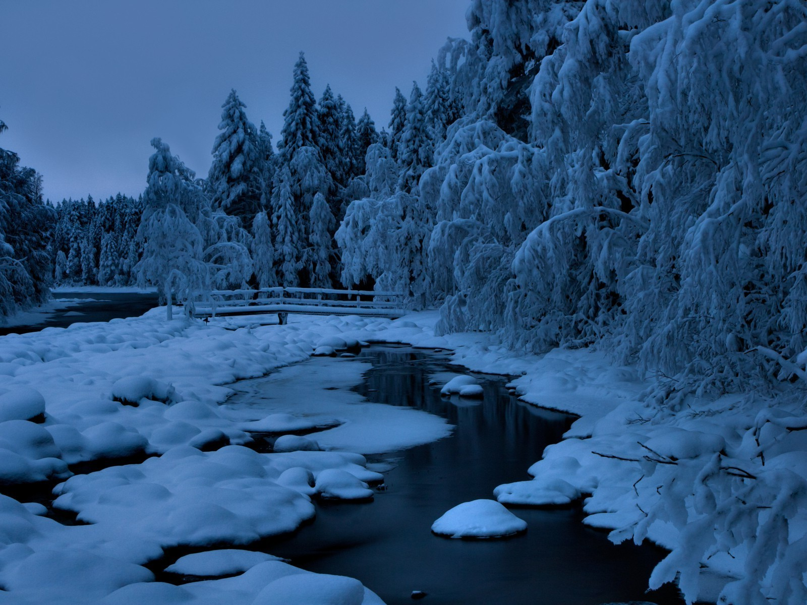 rivers ponds and streams snow winter ice cold frost wood frozen nature water landscape outdoors frosty tree river
