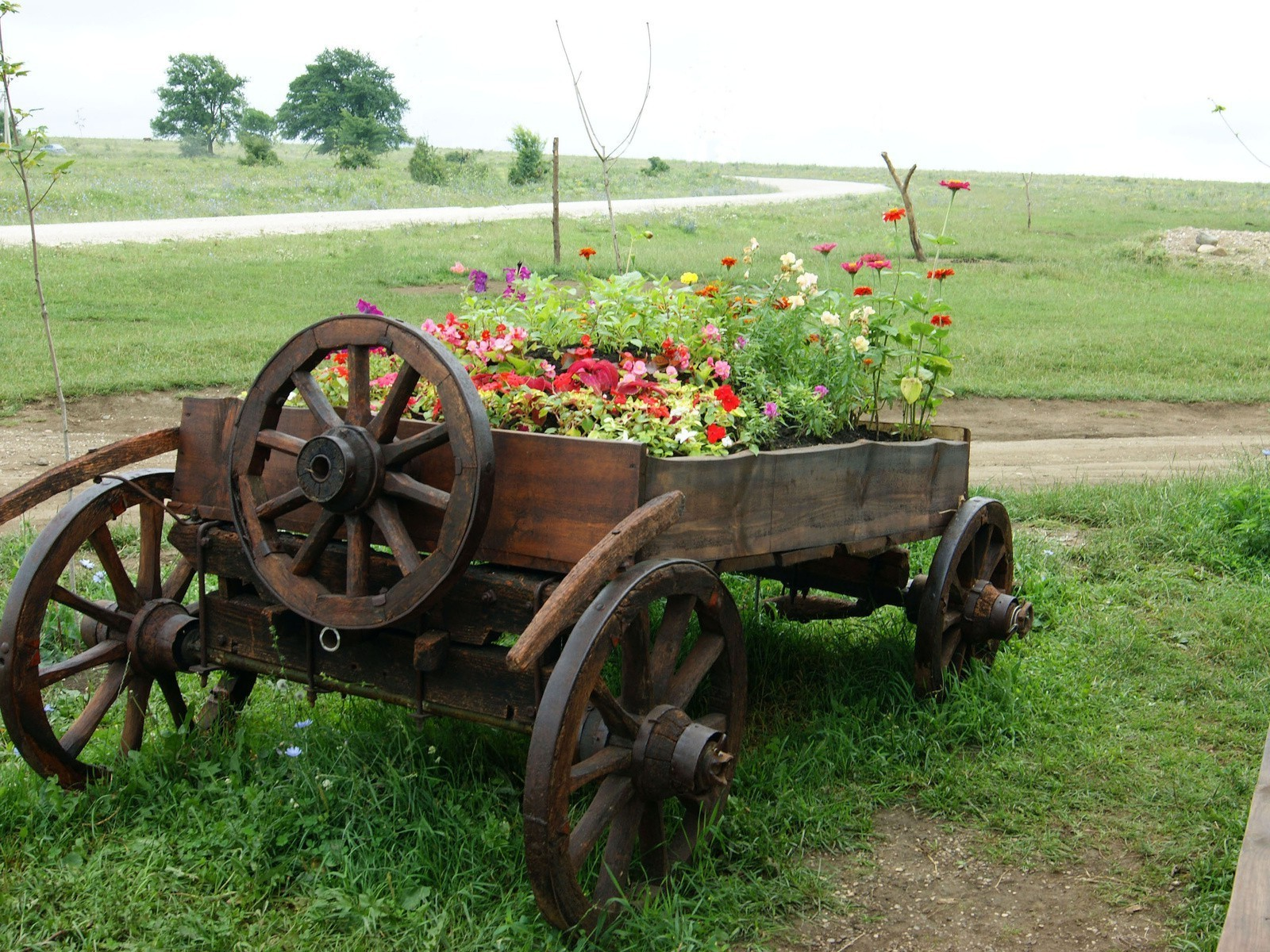 fields meadows and valleys farm agriculture grass cart rural wooden summer wood wagon carriage countryside garden