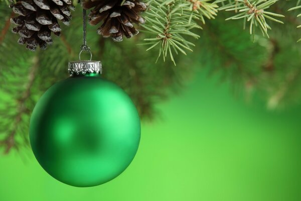 Green ball, pine cones, spruce