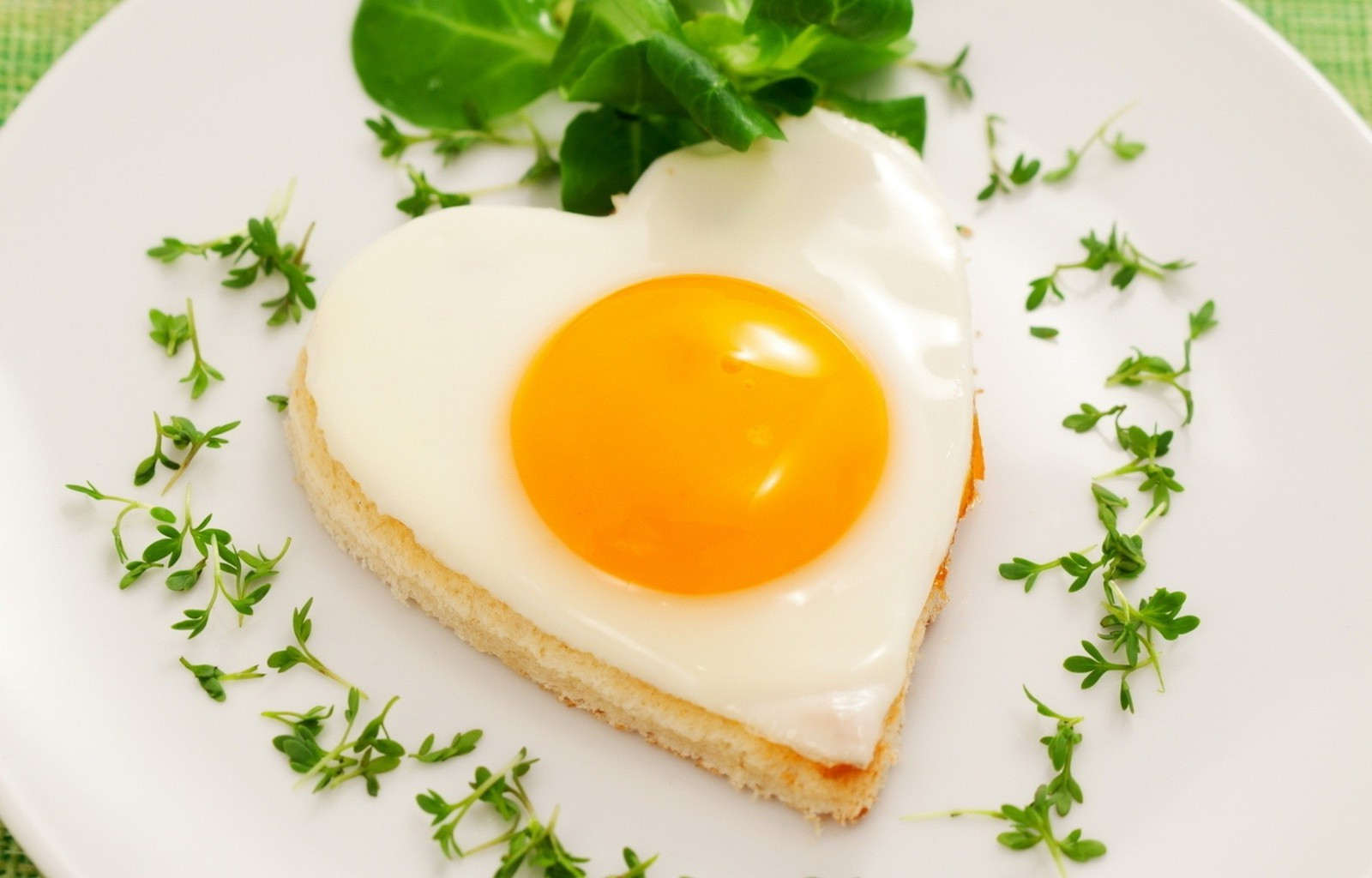 breakfast egg egg yolk food nutrition delicious lunch toast meal dawn cooking leaf bread dairy product plate butter dinner