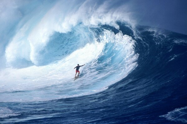 A surfer rides a big wave
