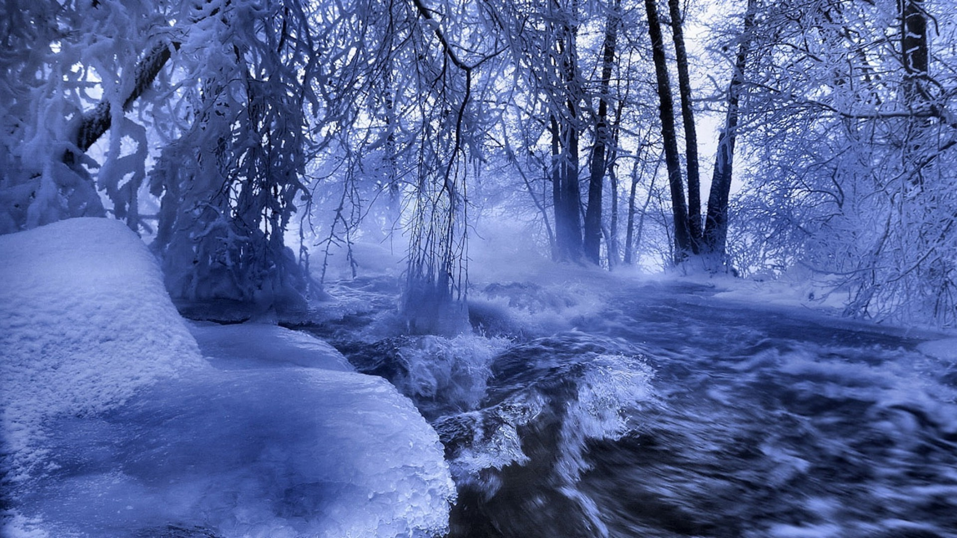 winter snow cold ice landscape frost frozen wood tree nature scenic frosty water season weather outdoors fair weather river park