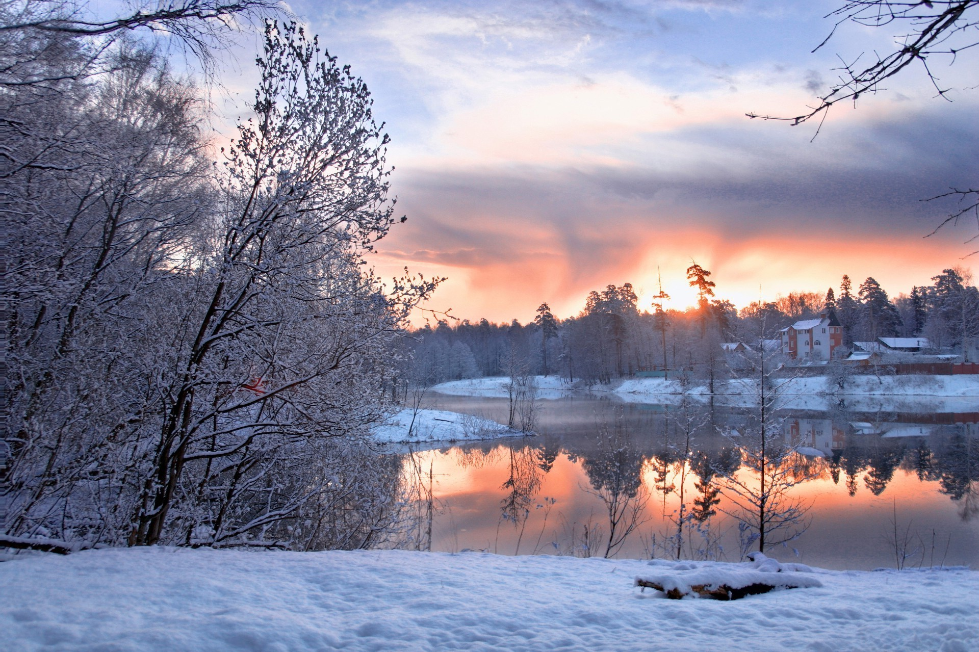 winter snow cold frost frozen landscape tree ice season dawn nature wood weather scenic sunset sky