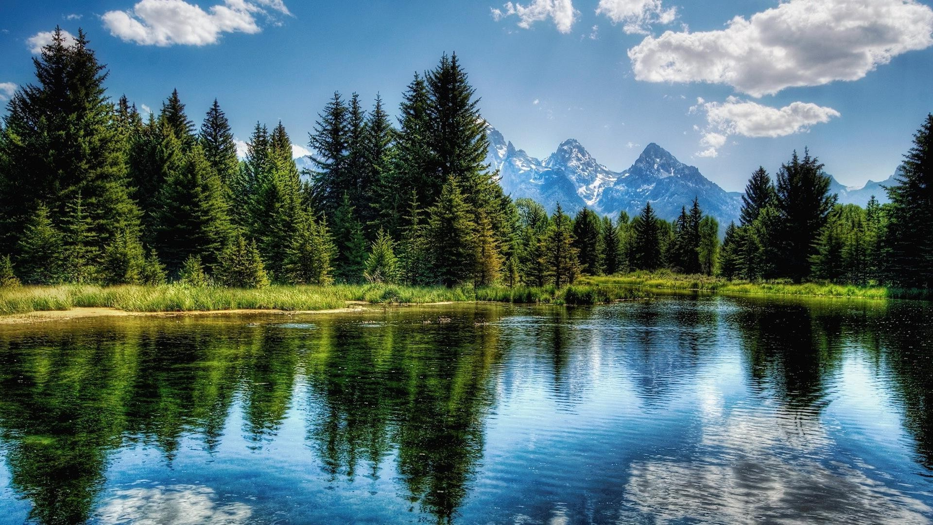 lake reflection water nature outdoors wood landscape composure tree summer sky scenic
