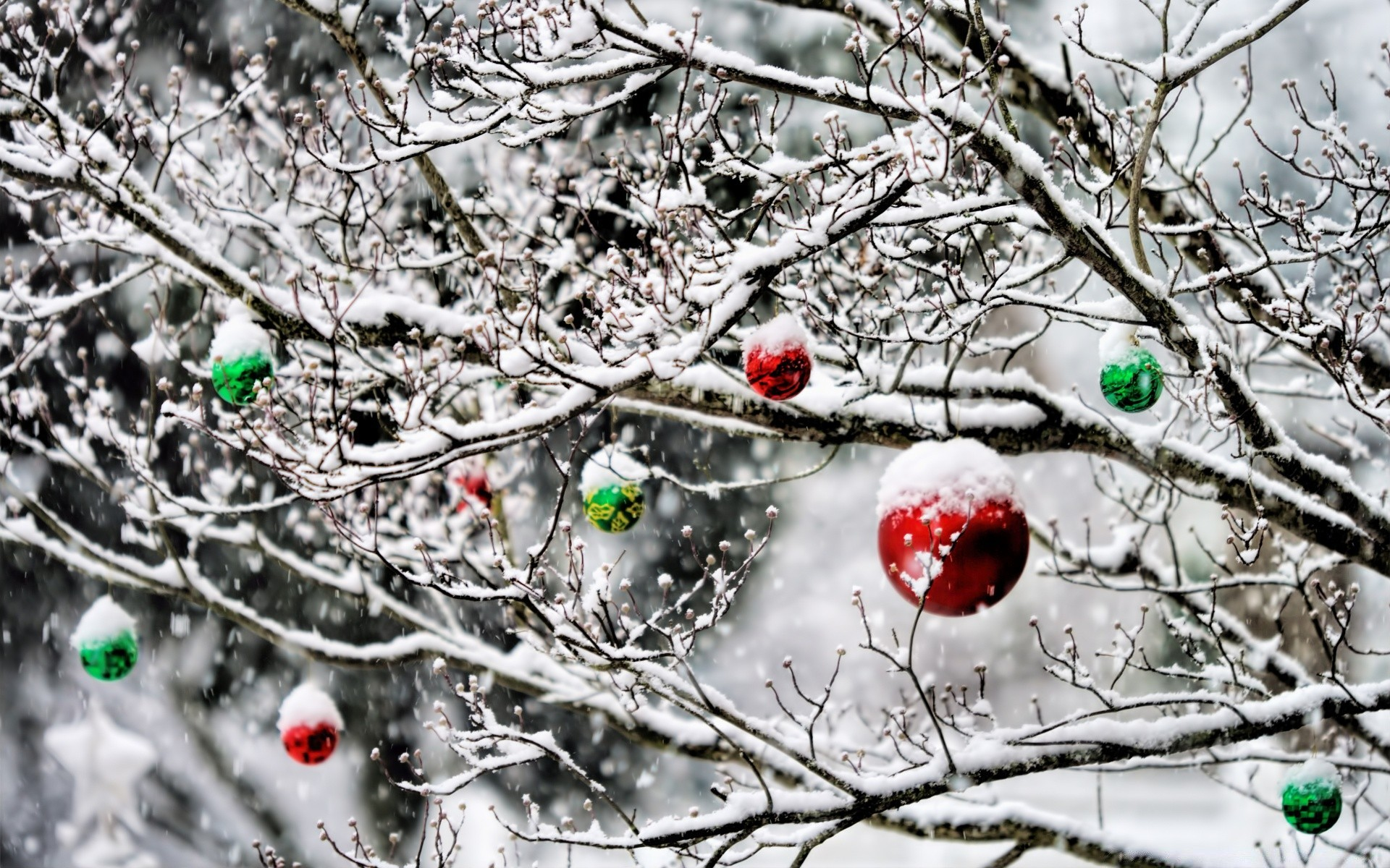 Christmas Ornaments In The Snow IPhone Wallpapers For Free