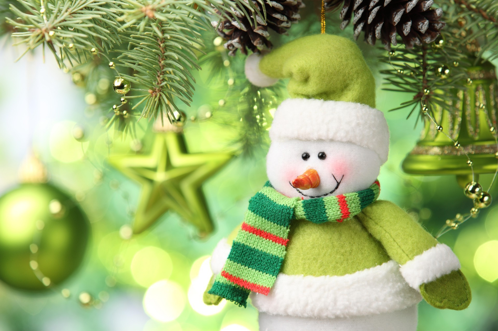 Snowman in green clothes