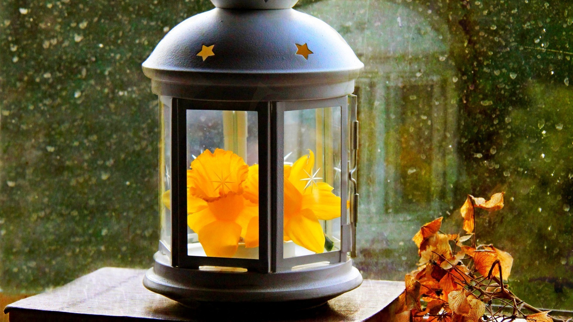 Lamp with a flower on the window