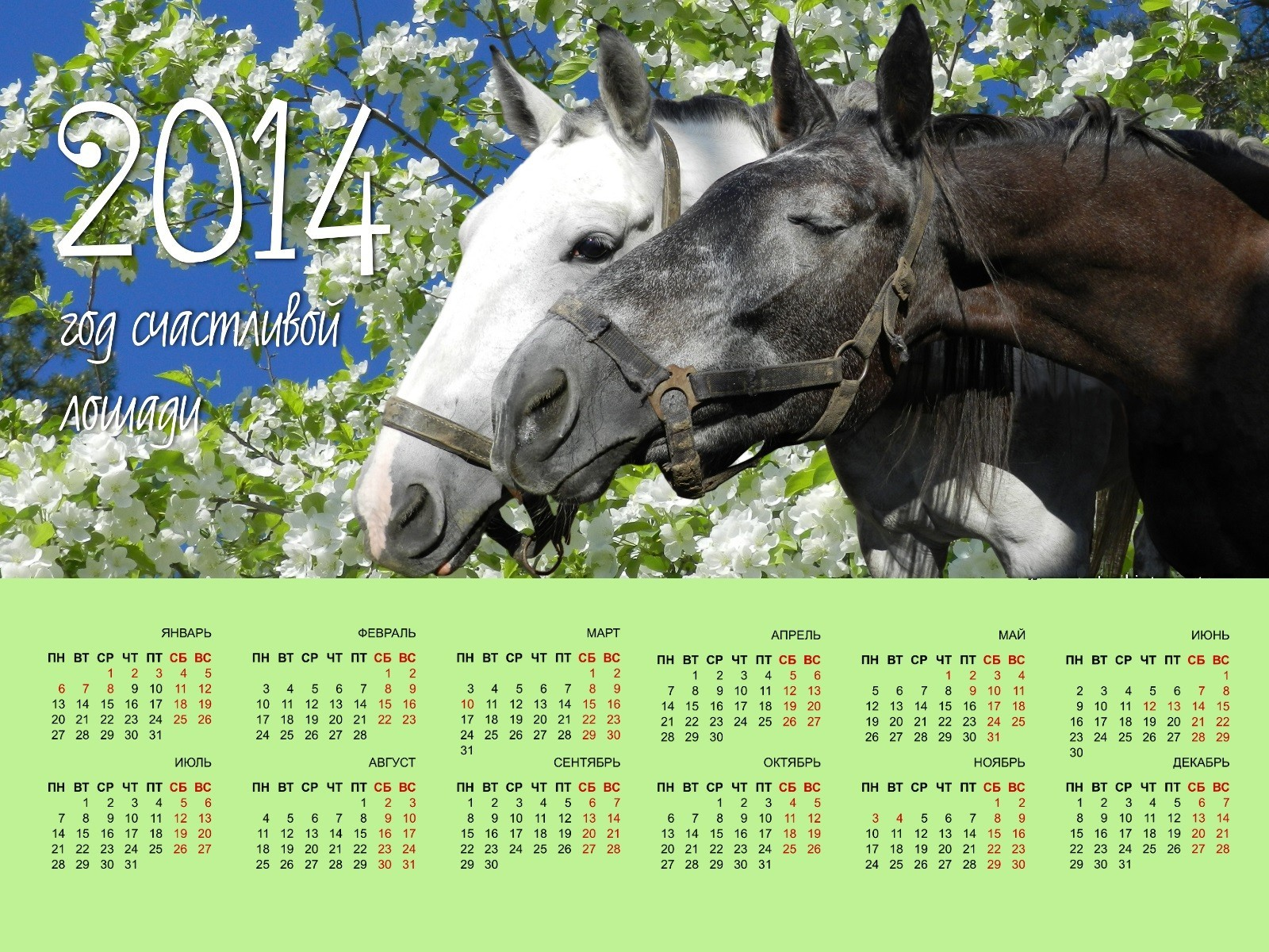 2014 Year Lucky Horse Free Wallpapers